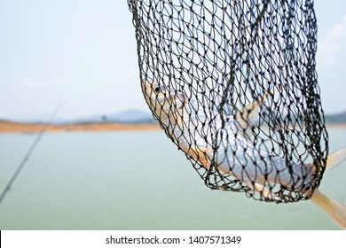 Fishermen can fish, freshwater fish. So was caught in the net