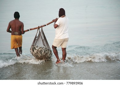 Fishermen carry a net with a catch. Fisheries on the shore of the ocean. Goa, India