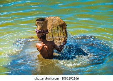 Fishermen catch wild Tilapia with wicker baskets in the rivers and ponds of Antsirabe, Central Madagascar