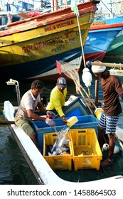 Fishermen and fisheries putting out fresh  fish  and seafood  from the boats at fish market on March 2019 In Negombo, Sri Lanka.
