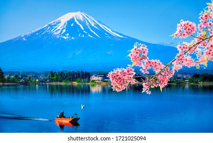 Fishermen on boat with cherry blossom branch at Shoji lake in the morning in Yamanashi, Japan