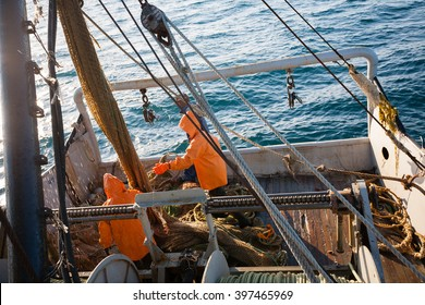 Fishermen pull trawl fish. Sea of Japan.
