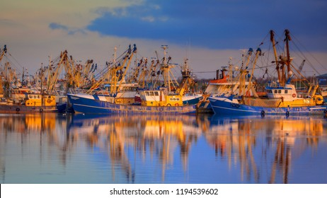 Fishery at Lauwersoog which hosts one of the biggest fishing fleets in the Netherlands. The fishery concentrates mainly on the catch of mussels, oysters, shrimp and flatfish in the Waddensea