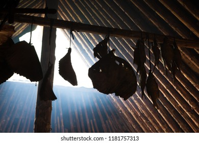 Fishes hanging in stone age hut