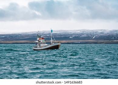 fishin boat in open north ocean (sea), whale tourism