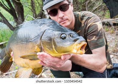 Fishing adventures, carp fishing. Mirror carp (Cyprinus carpio), freshwater fish.  Angler with a big carp fishing trophy