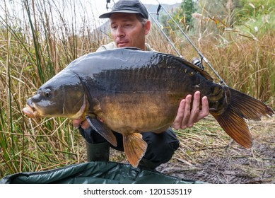 Fishing adventures, carp fishing. Mirror carp (Cyprinus carpio), freshwater fish.  Angler with a big carp fishing trophy. Focus on fish