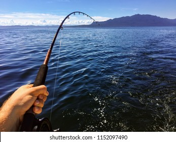 Fishing along the coast of British Columbia trolling for salmon.  Male hand holding the rod