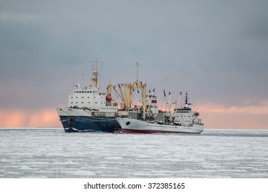 fishing base delivers products to the cold storage in the sea of Okhotsk