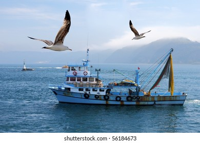 fishing boat on the Bosporus,surrounded  by seagulls with a lighthouse in the background , in Turkey