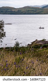 Fishing boat on a Scottish loch with highland landscape in the background and violet flowers