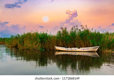 Fishing boat waiting in the reeds in the lake.