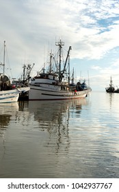 fishing boats anchored in the dock range.