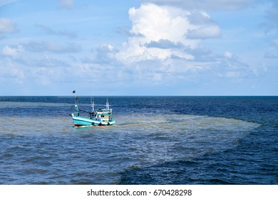 Fishing boats find after catching sea creatures in the sea. While traveling across the sea, two colors in Thailand.