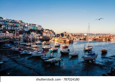 Fishing boats in the harbour at Brixham on the south coast of Devon in the Torbay district. Brixham is a small fishing village in the English Riviera, it is a magnet for tourists in the summer.