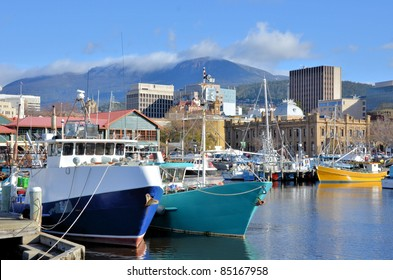 Fishing Boats in Hobart Harbour