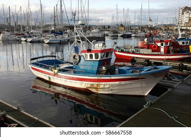 fishing boats moored at the port