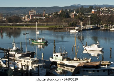 Fishing boats on Tamar River, Launceston, Tasmania