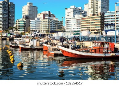 Fishing boats, Punta del Este, Uruguay