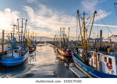 Fishing boats and shrimp boats in the old fishing port of Dorum-Neufeld. East Frisia in Lower Saxony in Germany