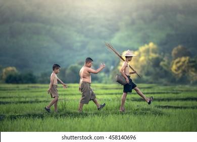 Pêcheur sur le champ de riz