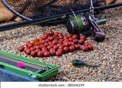 fishing for carp baits