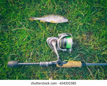 Fishing. The caught fish on the hook