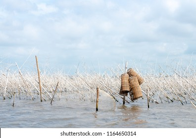 Fishing equipment in Lake Nokoue of Benin. Cloudy sky in West Africa, near Cotonou. Trees in water and fisherman equipment.