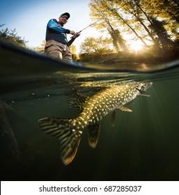 Fishing. Fisherman and pike, underwater view.