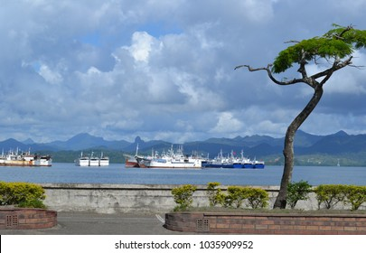 Fishing fleet at anchor, Suva harbour, Fiji Islands under a humid tropical cloudy sky