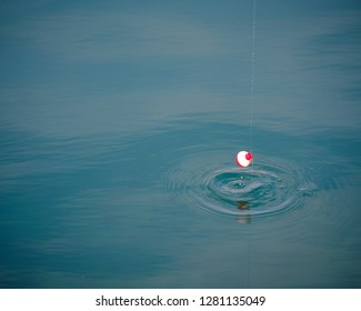 Fishing floater being pull out of water creating circular wave in blue green ocean water.  Floater is white and red and end of fishing line