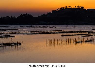 Fishing ground at dawn