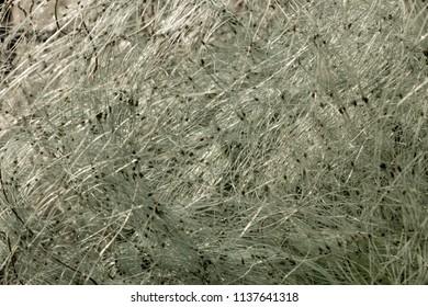 fishing net pile