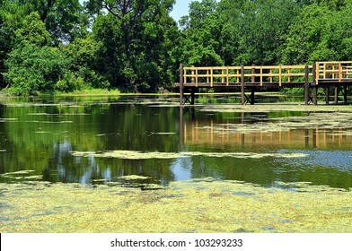 Fishing Pier Over Southern Louisiana Swamp