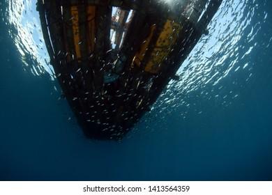 Underwater Platform Images, Stock Photos & Vectors
