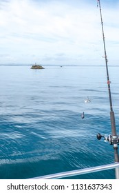 Fishing rod with bait, hook and sinker with navigation buoy in background in Far North District, Northland, New Zealand, NZ