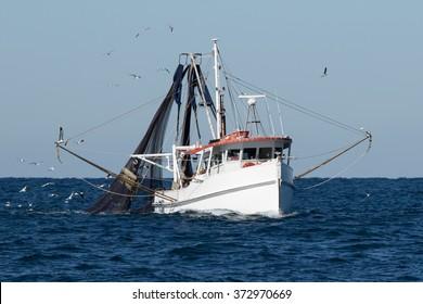 Fishing Trawler at Sea, Port Stephens, NSW, Australia
