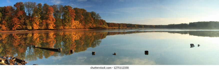 Fishpond autumn panorama