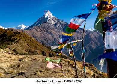 Fishtail mountain Mardi Himal trek in Nepal with colourfull praying flags in the foreground