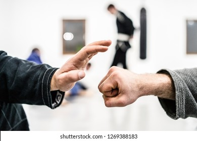 Fist hands slap at the brazilian Jiu Jitsu training