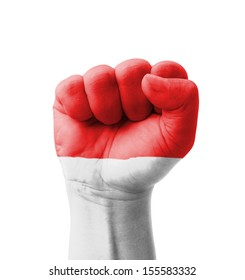 Fist of Indonesia flag painted, multi purpose concept - isolated on white background