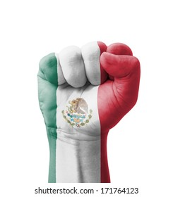 Fist of Mexico flag painted, multi purpose concept - isolated on white background