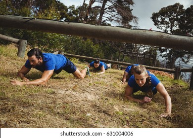 Fit people crawling under the net during obstacle course in bootcamp
