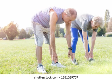 Fit senior couple doing toe touching exercise in park