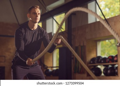 Fit, sporty and athletic sportsman working in a gym. Man training using battle ropes. Sports, athletics and fitness concept.