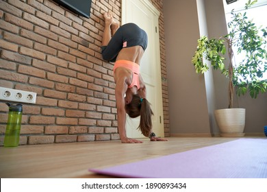 Fit sporty strong yogi young adult sporty woman wear sportswear doing handstand pilates fitness sport exercise indoor in apartment living room interior. Healthy lifestyle home gym yoga workout concept