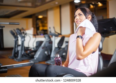 Fitness girl workout in the gym. Exercises for women, bodybuilder train, sports lifestyle.