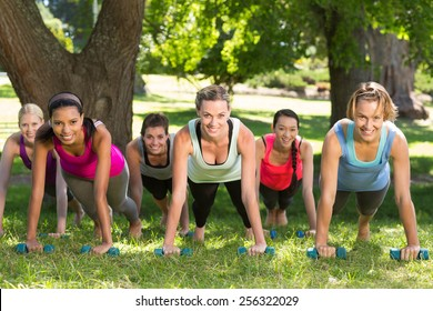 Fitness group planking in park on a sunny day