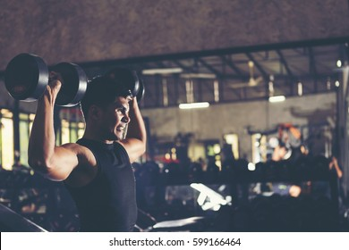 fitness people doing exercises and building muscle at gym ; healthy lifestyle