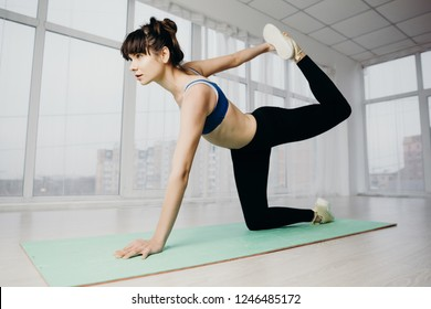 Fitness, pilates, active lifestyle, perfect shape, flexibility, yoga, pilates. fit woman workout performing static stretching exercise